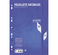 100 pages feuilles mobiles A4 21x29,7 cm - CALLIGRAPHE - Grands carreaux