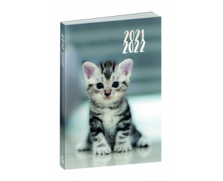 Agenda scolaire journalier 2021/2022 - TOP OFFICE - 12 x 17 - Animaux Chaton
