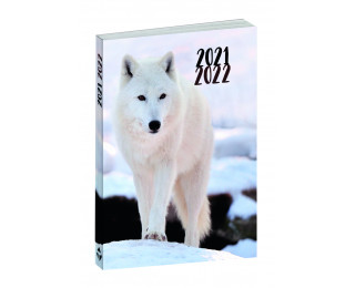 Agenda scolaire journalier 2020/2021 - TOP OFFICE -  12 x 17 - Animaux Loup