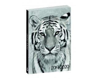 Agenda scolaire journalier 2019/2020 - TOP OFFICE - 12 x 17 - Animaux Tigre blanc