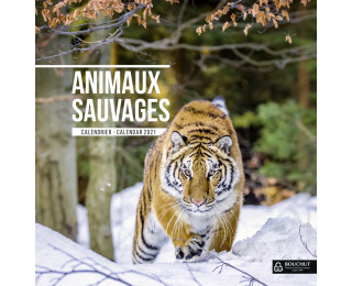 Calendrier Animaux.Calendrier Annuel 2020 Bouchut 30 X 30 Animaux Sauvages