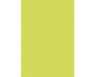 Lot de 25 feuilles A4 - POLLEN - 210g - Vert bourgeon