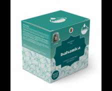 Lot de 10 capsules thé compatibles Nespresso - Balsamic