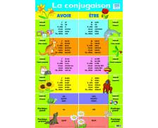 Poster éducatif recto verso La Conjugaison - PICCOLIA
