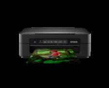 Imprimante multifonction XP255 - EPSON - Jet d'encre 3-en-1 - WiFi