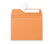 20 Enveloppes 90x140 Pollen - clémentine 120g bande siliconée - CLAIREFONTAINE