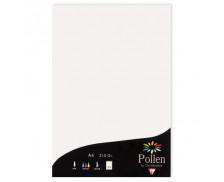 25 Feuilles - POLLEN - A4 - 210g - Blanc