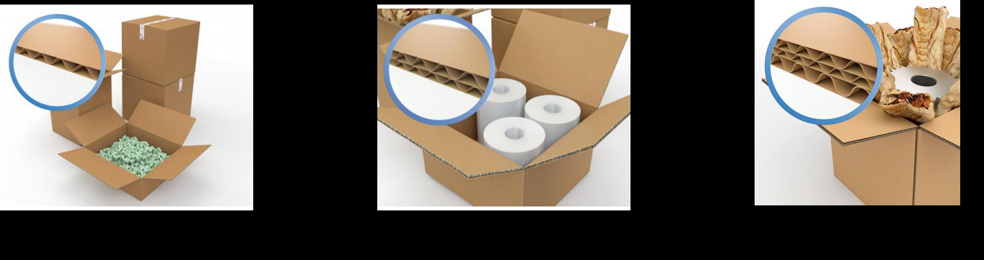 cannelure carton